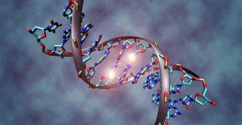 What you should know about Epigenetics?