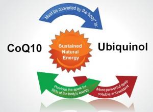 Coenzyme Q10 or Ubiquinol