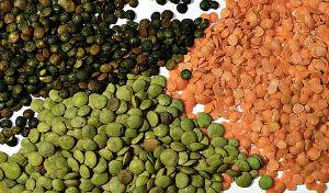 amino acid lentils