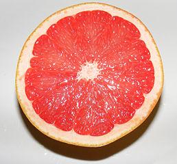 258px-Grapefruit2C_half.jpg