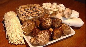 300px-Collectionofmushrooms.jpg
