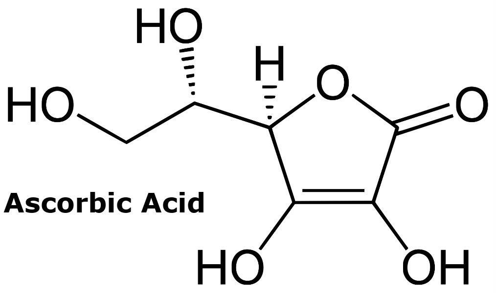 Vitamin C, Sepsis and Blood Vessel Health