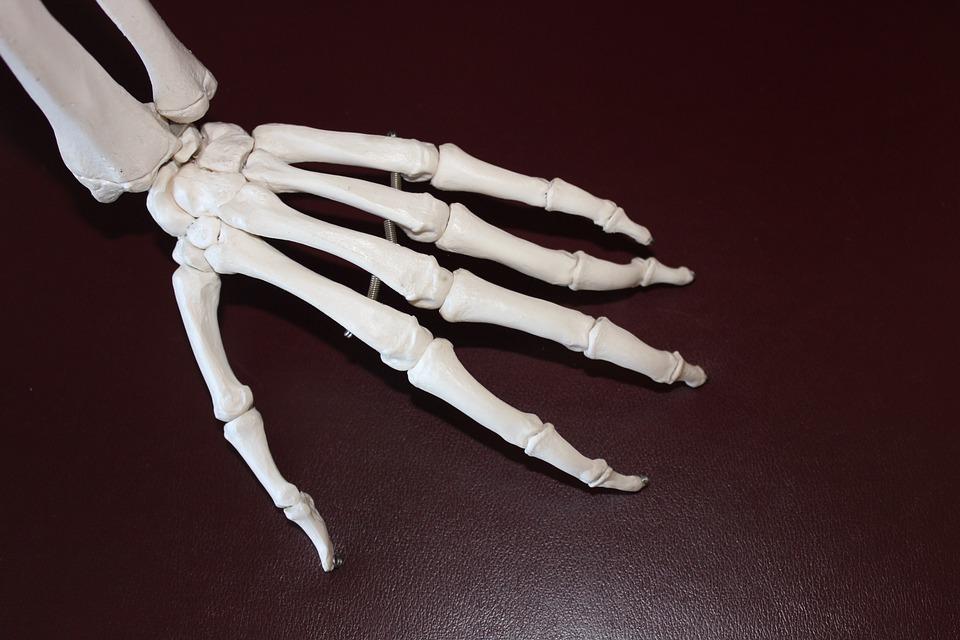 Vitamin K and Bones