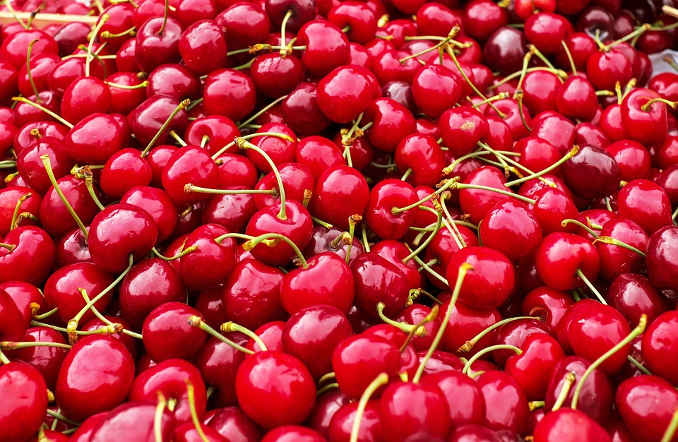 How tart cherries help in the fight against gout