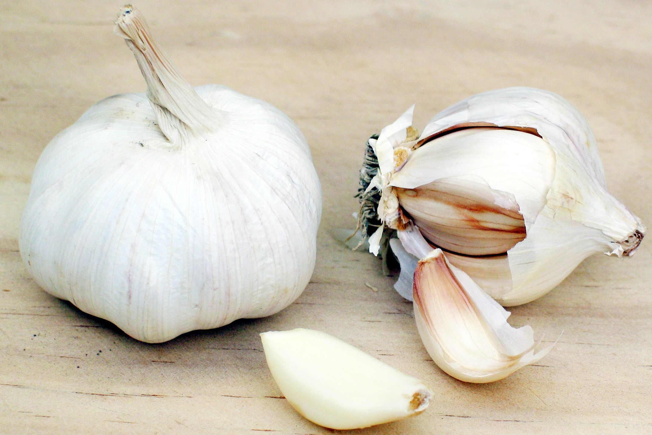 Garlic Extract May Minimize Effects of Gingivitis