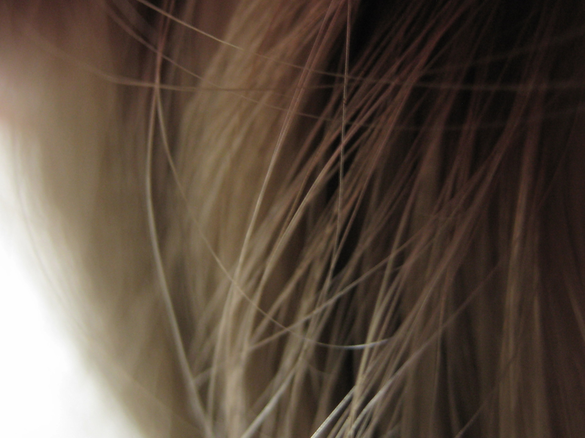 Does folic acid assists to grow your hair?