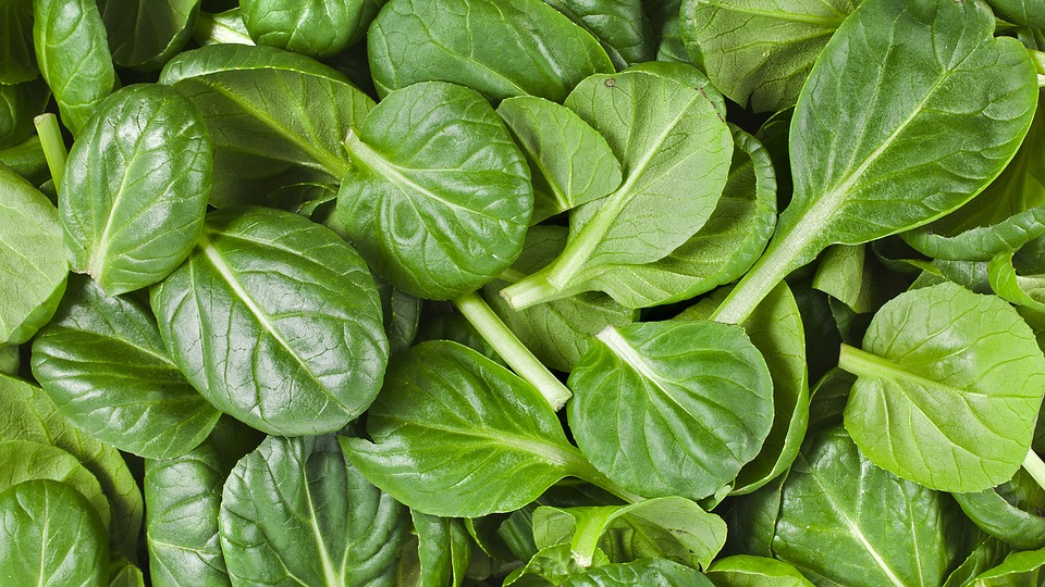 Benefits of Eating Spinach Everyday
