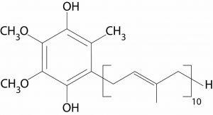 Why Is Ubiquinol So Much Better Than Standard COQ10(Ubiquinone) ??