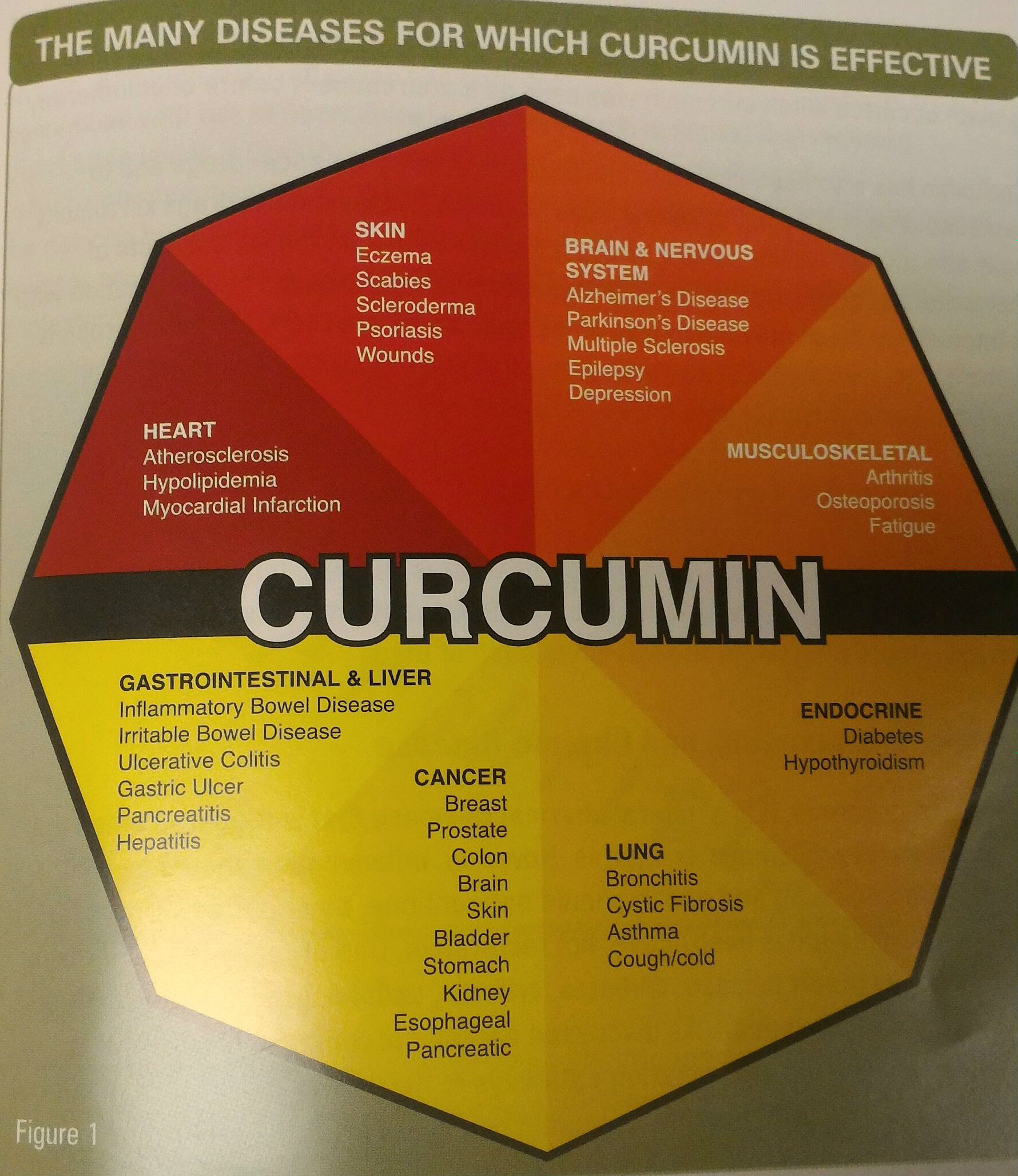 Technically, Curcumin Found in Turmeric Has Been Found To: